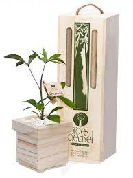 houpara tree gift trees