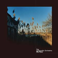 build a home ma fleur by the cinematic orchestra on apple