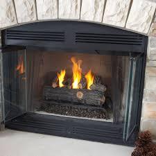 gel fuel fireplace insert firebox home design inspirations