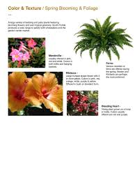Braided Hibiscus Tree Pictures by Capri Farms Slideshow Capri Farms A Source Of Fine Tropical