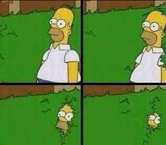 Meme Generator Homer Simpson - homer simpson in bush large blank template imgflip