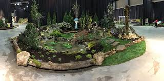 aquascapes of ct aqua scapes of ct llc home facebook