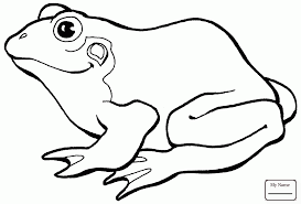 coloring pages tadpole coloring page pages for kids frogs