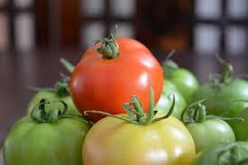 imagenes gratis de frutas y verduras tomate frutas y verduras foto gratis en pixabay