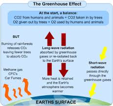 global warming causes and effects causes and effects of global warming s cool the revision website