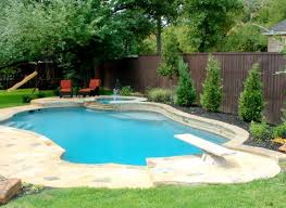 Backyard Ideas With Pool by Large Backyard Pools With Diving Boards Freeform Swimming Pool