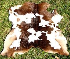 Calf Skin Rug Calf Hide Skin Rug Western Ecowhides Com