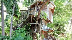 a treehouse u0026 six other places rent on airbnb curbed miami