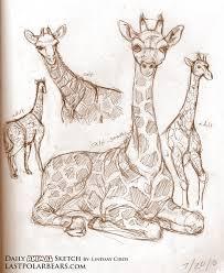 daily animal sketch u2013 giraffe u2013 last of the polar bears