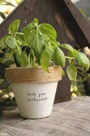 165 best plant puns images on pinterest indoor gardening indoor