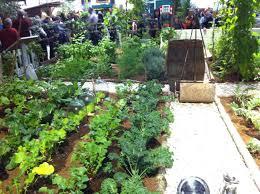 planning a beautiful vegetable garden the garden inspirations