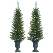 sterling 4 ft pre lit cedar pine artificial christmas trees with