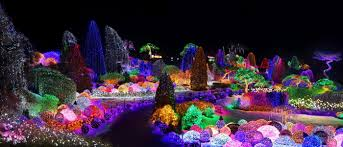 garden of lights hours lighting festival at the garden of morning calm 아침고요수목원 오색