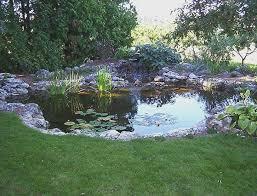 Backyard Garden Ponds Backyard Ponds Decoration House Exterior And Interior How To