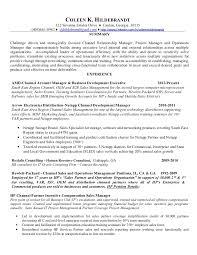 Sle Resume Business Development Director coleen hildebrandt resume proj 2013