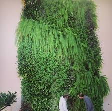 lovable living wall diy vertical garden how to make vertical