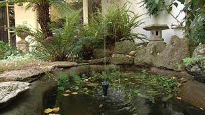 garden design garden design with courtyard gardens on pinterest