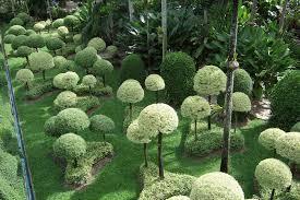 Teh Tehan pictures nong nooch tropical garden 1