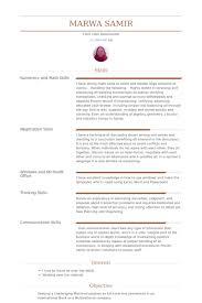 Teller Resume Teller Resume Samples Visualcv Resume Samples Database