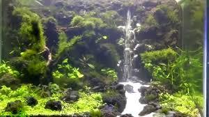 japanese aquascape underwater waterfall aquascape youtube aquarium ideas
