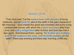genesis 1 1 5 in the beginning god created the heavens and the