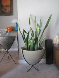 rhan vintage mid century modern blog bullet planters and new finds