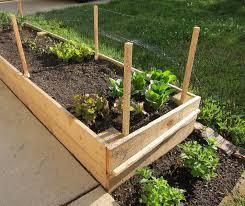 Garden Netting Trellis Protect Garden With Garden Netting U2014 Optimizing Home Decor