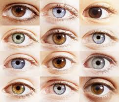 so blue eyes are technically brown and it u0027s not just another u201cthe