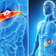 bauchspeicheldrüsenschwäche symptome bauchspeicheldrüse gesundheitslevel check