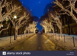 christmas lights on trees in the columbia university campus stock