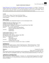 Sample Of Skills In Resume by Example Of Basic Resume