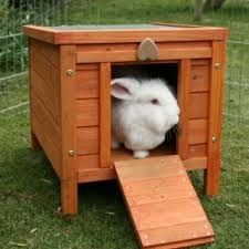 Sale Rabbit Hutches Rabbit Hutches And Runs For Sale Uk Chicken Coops And Chicken Runs