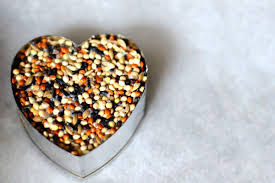 bird seed favors birdseed wedding favor hearts easy and inexpensive diy