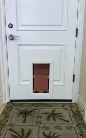 Exterior Pet Door Pet Door Gallery Pet Doors Pet Doors In Standard Doors