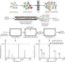 proteomics post translational modifications and epigenetics