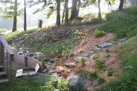 landscape hillside landscaping ideas great backyard landscape