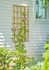 teak trellises wall trellises gardener u0027s supply