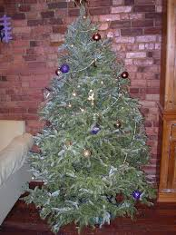 christmas trees are real or fake better for the environment