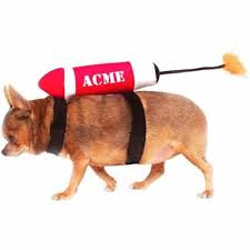 funny dog costumes the best dog costumes for halloween