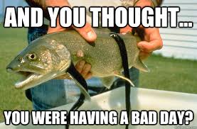 Having A Bad Day Meme - and you thought you were having a bad day poor trout quickmeme