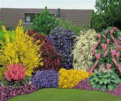 Backyard Flower Bed Ideas Colorful Backyard Flower Bed Ideas Landscaping Backyards Ideas