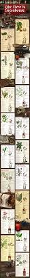 Poisonous Garden Flowers by 61 Best Poisonous Plants Images On Pinterest Poisonous Plants