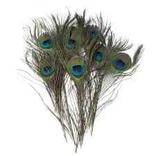 amazon com pack of 30pc natural peacock feathers 10 12 u0027 u0027 arts