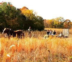 sonic open on thanksgiving news recipes lazy heron farm