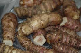 cuisiner topinambour saltimbocca de canard purée de topinambour et huile de basilic