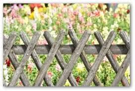 Fence Ideas For Garden Garden Fencing Ideas