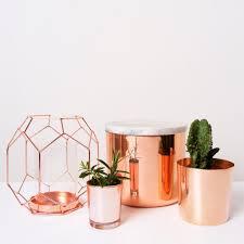 att pynta copper homewares candleholder succulent pot plant