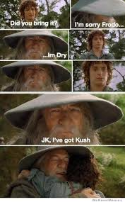 Frodo Meme - i m sorry frodo i m dry weknowmemes