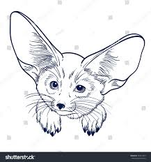 printable fox coloring pages for kids to print pictures and colour