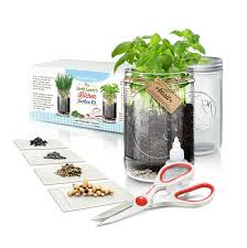 Kitchen Herb Garden Kit by 7 Best Gifts For Foodies Under 30 Strawmarysmith